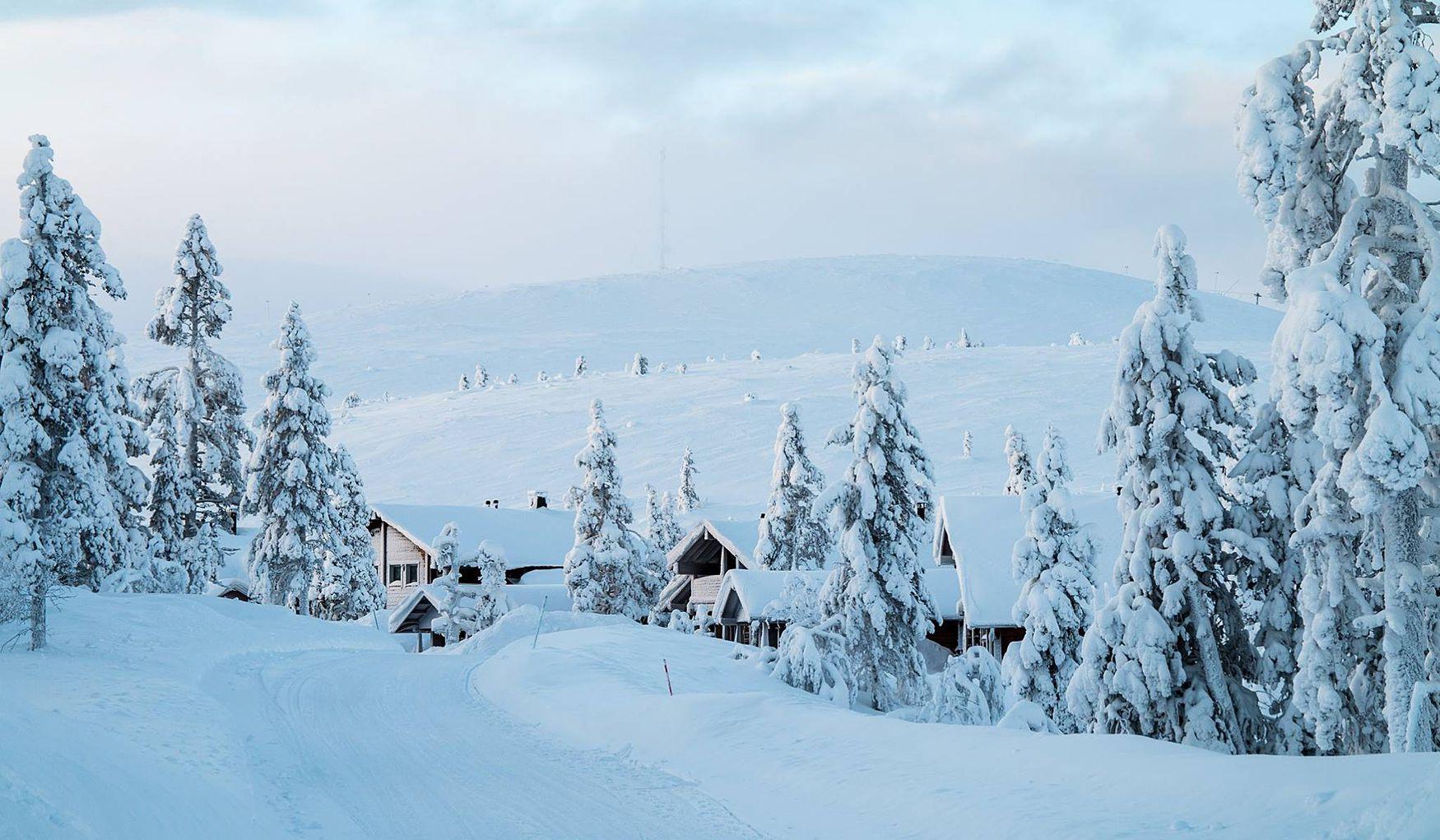 Последний шанс попасть в Лапландию на лыжный кэмп!
